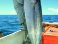 Fishing-075